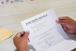Bankruptcy and Eviction History